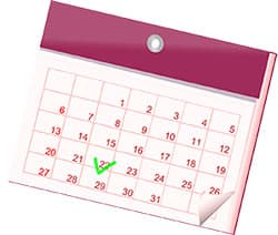 1er et 11 novembre chomés